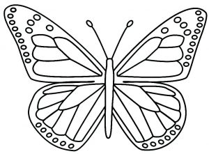 Full page butterfly template