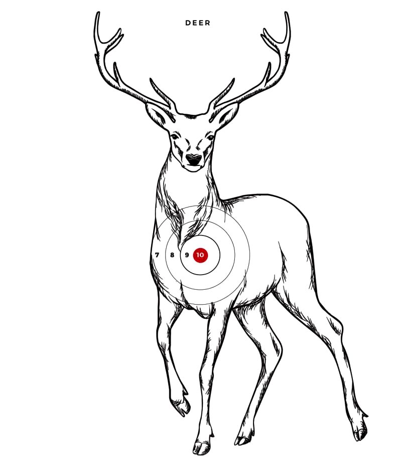 Printable Animal Targets